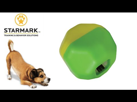 Treat Dispensing Puzzle Ball from Starmark