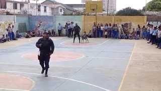 Liceo Armando Reverón (Perros policías)