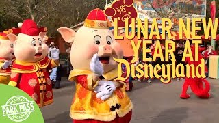 Lunar New Year 2019 | Disneyland