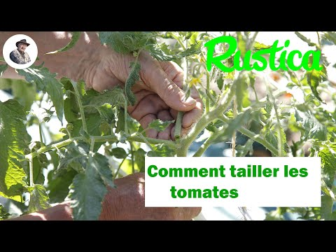 tailler la tomate by rustica l 39 hebdo jardin watch and. Black Bedroom Furniture Sets. Home Design Ideas
