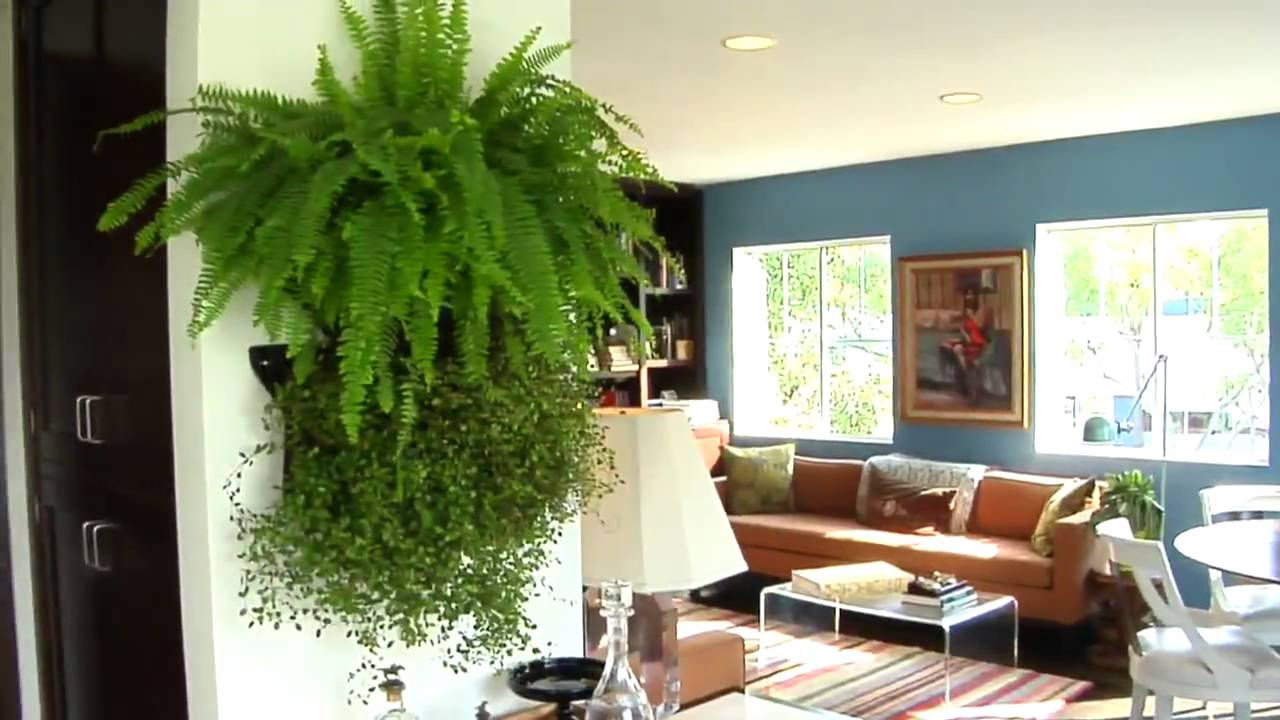 Woolly Pocket - Instant Living Walls with the Wally modular living wall  system - YouTube