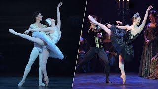 Swan Lake: the dual role of Odette and Odile | English National Ballet