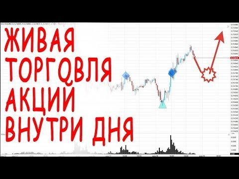 Торговля внутри дня на акциях фондовой биржи