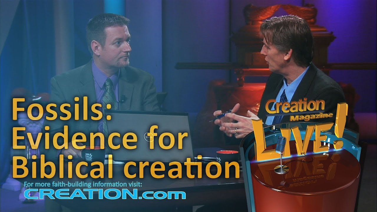 Fossils: Evidence for Biblical creation (Creation Magazine LIVE! 3-02) by CMIcreationstation