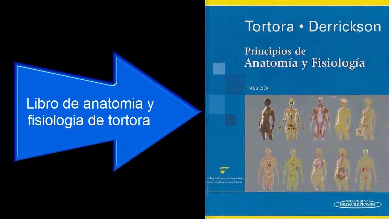 Descargar Anatomia y Fisiologia de Tortora en PDF por Mediafire ...