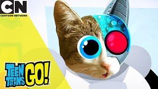 Teen Titans Go! | Kitty Titans | Cartoon Network