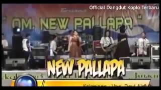 Video Full Konser NEW PALLAPA Pesta Laut Bajomulyo 2015 2016 FULL HD download MP3, 3GP, MP4, WEBM, AVI, FLV Agustus 2018