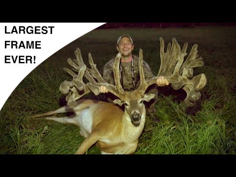 WORLD RECORD WHITETAIL FRAME? | BRACE YOURSELF!
