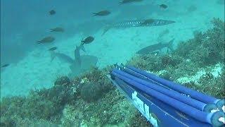 Spearfishing🏆 Big Dusky Grouper - Sakis Tsonis 0-1 #  Ψαροντούφεκο μεγάλος Ροφός