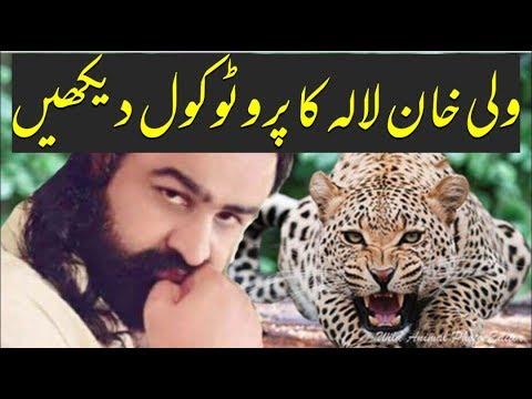 Wali khan Lala ka Protocol dekhen