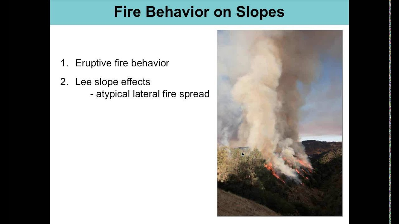 fire behavior Fir 3301, fire behavior and combustion 1 course description provides an understanding of the basic principles of fire chemistry, the process of fire combustion, fire behavior and.