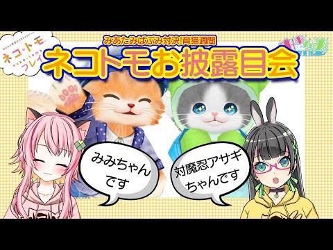 【みあたみ生配信】ばぶみ対決結果発表!ネコトモママ会