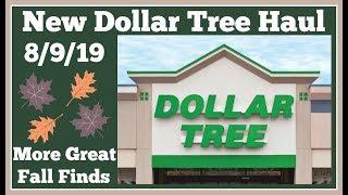 New Dollar Tree Haul 🤑 8/9/19 More Great Fall Items