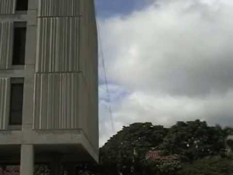 Smith TKD Rappel some of highest buildings in Honolulu
