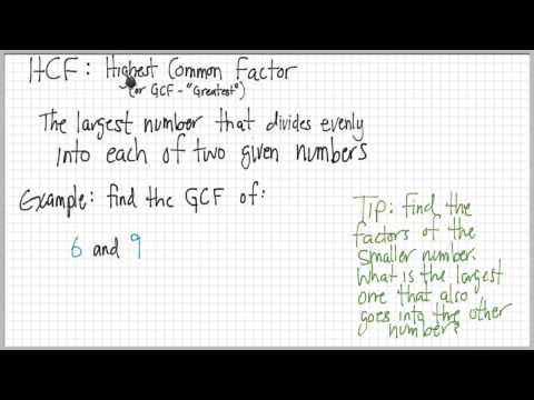 Multiples and Factors: LCM and GCF, Composites and Primes (with examples)