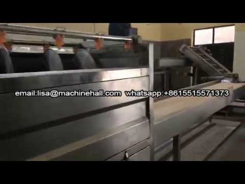200KG/H French Fries Production Line In Sudan|Automatic French Fry Machine Plant