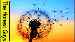 """GUIDED SLEEP MEDITATION - Deep Relaxation -  """"The Cleansing Wind (Non-Wake Version)"""