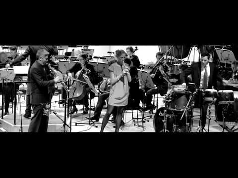Le Quattro Stagioni | Concerto for Alpha and amplified strings | by Peter Navarro-Alonso
