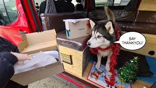 Husky gives Daughter and Me the Perfect Gift