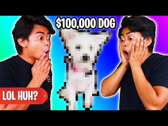 $1 DOG VS $100,000 DOG!