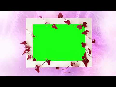 green-and-pink-frame-animation-bg-|-photo-frame-video-background-|-dmx-hd-bg-288