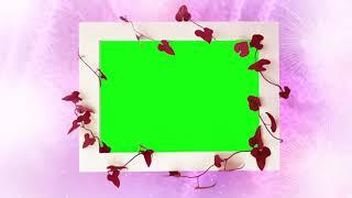 288 yeşil ve Pembe Kare animasyon BG | Fotoğraf Çerçevesi Video arka Plan | DMX HD BG