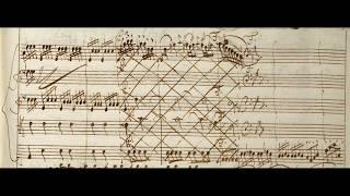 Concerto Del Vivaldi / RV 281 in E minor (Autograph score, First version)