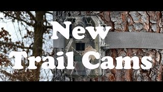Baixar New Trail Cams for St. Bernard Acres!!!!