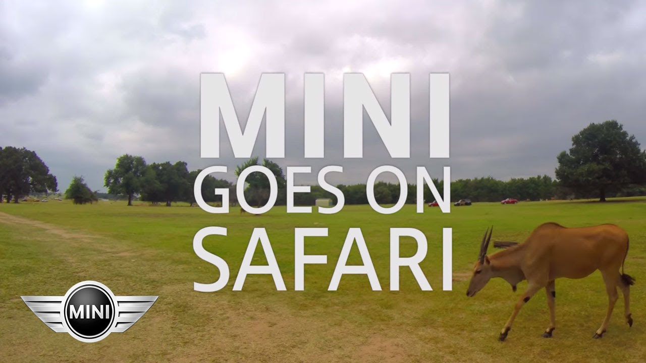 MINI USA | MINI Goes on Safari #MTTS2014