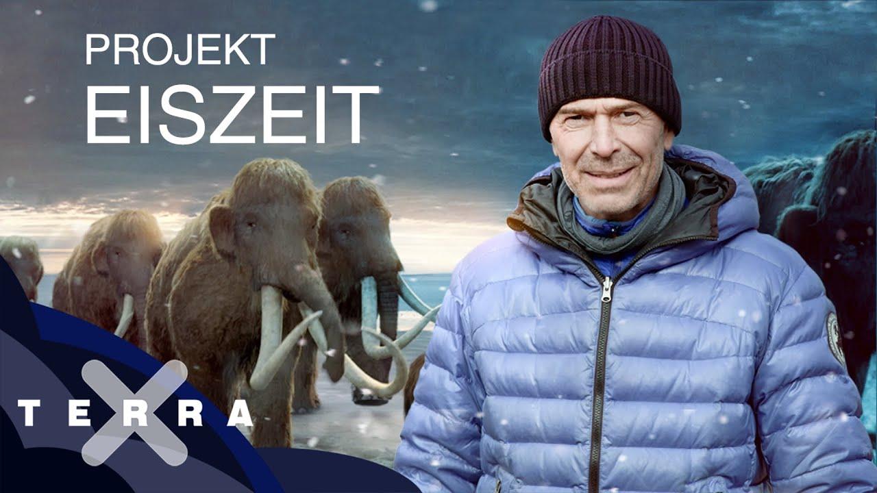 Download Zurück in die Eiszeit in drei Schritten | Dirk Steffens | Terra X