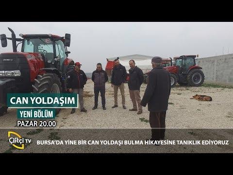 Bursalı Çiftçimiz Traktör Alma Hikayesi - CAN YOLDAŞIM #traktör #çiftçi #tarımaletleri