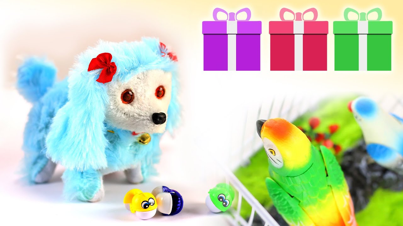 Surprise Box Birds Fish and Puppy or Dog Toys for Kids Children