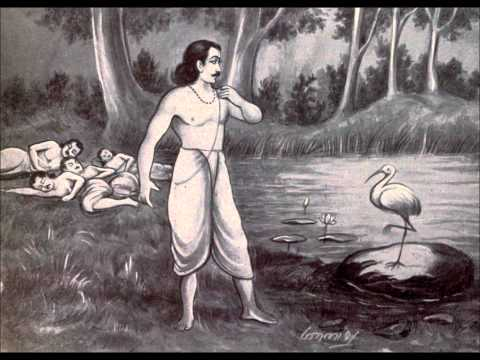 MAHABHARATA CHAPTER 42 THE ENCHANTED POOL