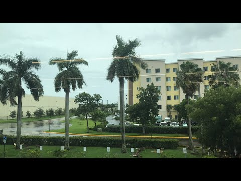 Look outside of the Miami Herald building in Doral as Hurricane Irma inches towards South Florida.