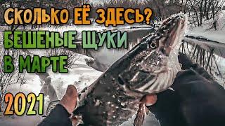 Щучий РАЙ Рыбалка На Спиннинг 2021 Джиг в Марте