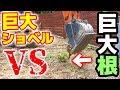 超強力ショベルで強固な桜の根を掘る【DIYウッドデッキ#3】