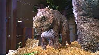 Прогуляться среди динозавров предлагают на выставке в Париже