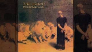 The Sound - New Dark Age (HQ)