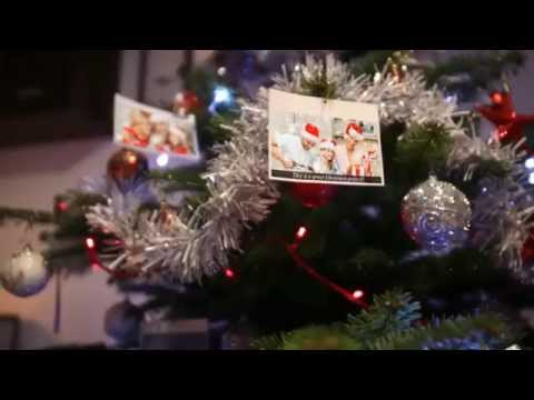 christmas tree photo gallery after effects project files