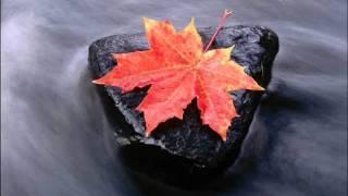 OST Autumn in My Heart - Tears