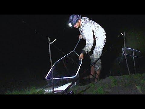 Ночная рыбалка на сома. Эксперимент: наживка с чесноком! Выход подёнки. Закидушки.