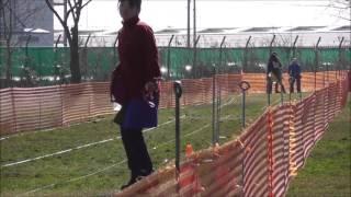 2017年01月22日千葉ポートパークで開催されたNPA LureCoursing JapanCup...