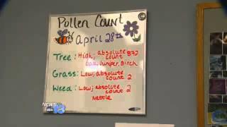 Bad Allergy Season, Good for Business
