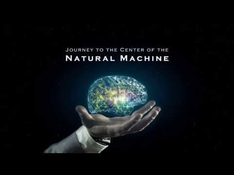 For the First Time at Sundance Film Festival: Journey to The Center of The Natural Machine