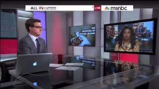 Legal Correspondent Areva Martin • Ferguson legal analysis on MSNBC