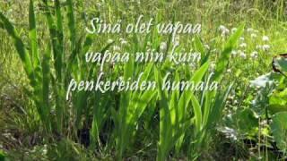 Tuure Kilpeläinen (2010): Sinä olet vapaa +Lyrics