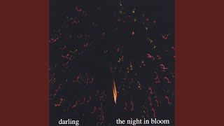 The Night in Bloom