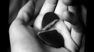 Riccardo Cocciante - Quando FInisce Un Amore