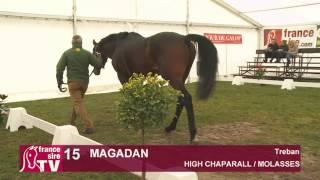 Magadan - Etalon Show du Centre Est 2015