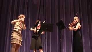 Serenade In D Major, Entrata:Allegro Tempo Ordinario d